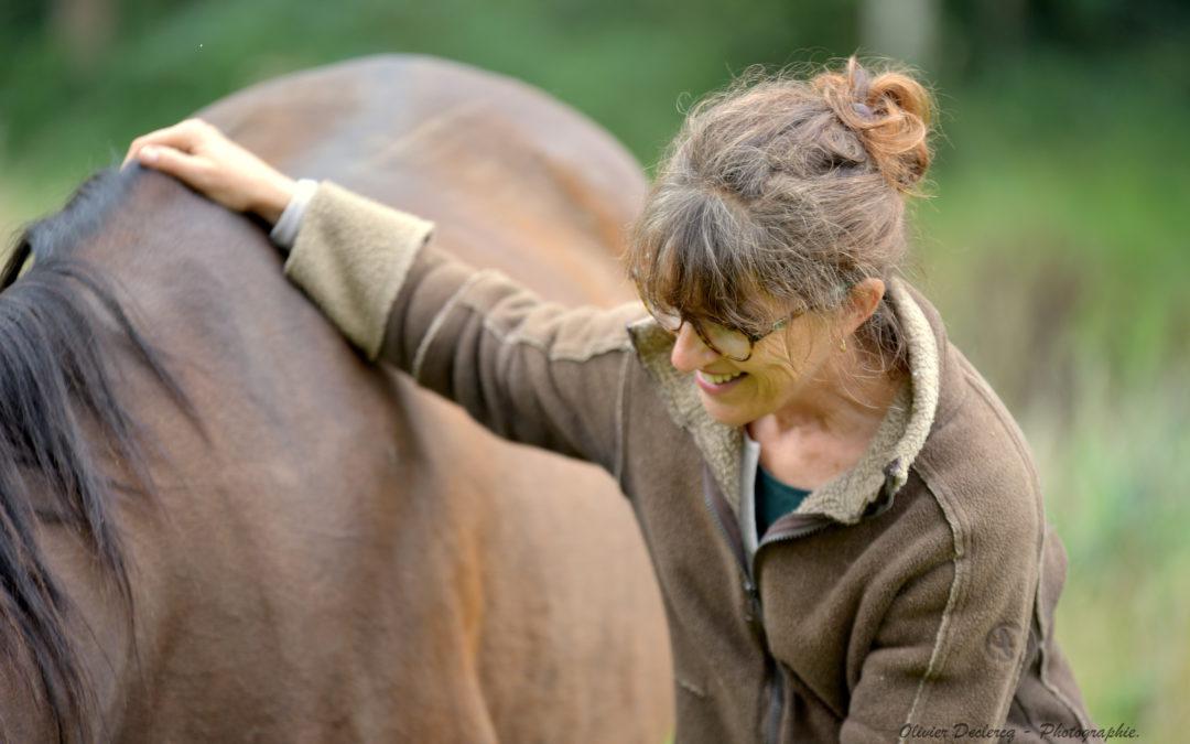 Les chevaux nous expliquent les demandes d'attention