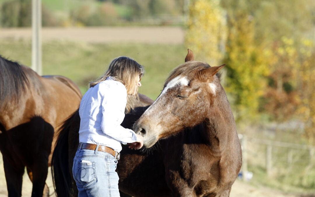 Avec le cheval comme en amour